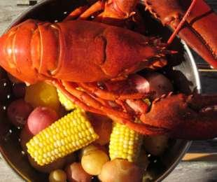 Sunday Lobster Bake May 31st